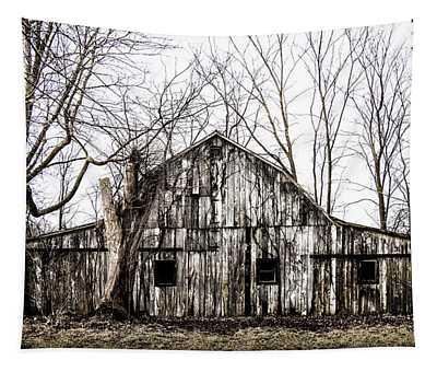 Abandoned Barn Highway 6 V5 Tapestry
