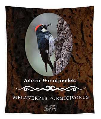 Acorn Woodpecker Granary Tree Tapestry