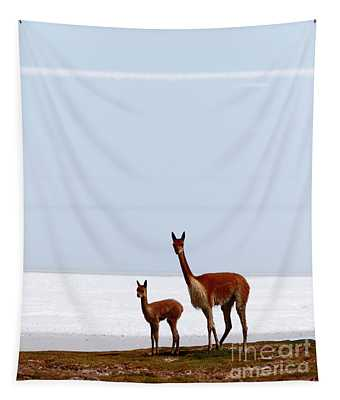 Adult And Young Vicuna Tapestry