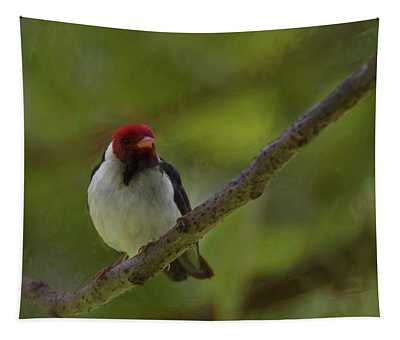 Adult Yellow Billed Cardinal Tapestry