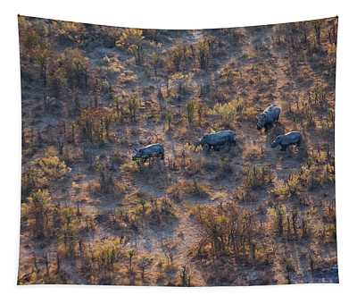 Aerial View Of A Herd Of Wild White Rhinoceros, Botswana Tapestry