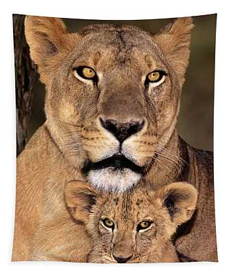 African Lions Parenthood Wildlife Rescue Tapestry