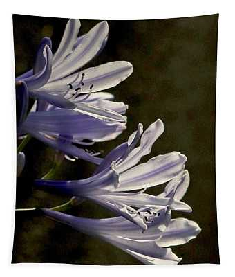 Agapanthus Tapestry