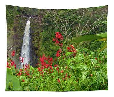 Akaka In Red Tapestry