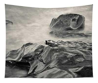 Allens Pond Xvii Toned Tapestry