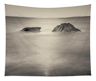 Allens Pond Xxiv Toned Tapestry