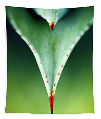 Aloe Thorn And Leaf Macro Tapestry