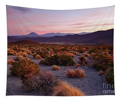 Altiplano Grasslands At Sunset Isluga National Park Chile Tapestry