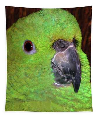 Amazon Parrot Tapestry