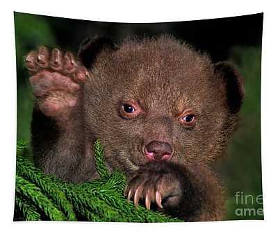 American Black Bear Cub Wildlife Rescue Tapestry