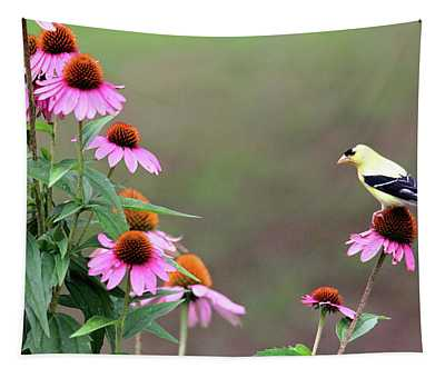 American Goldfinch On The Coneflowers Tapestry