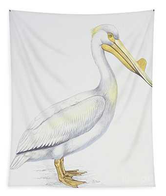 American White Pelican  Pelecanus Erythrorhynchos Tapestry