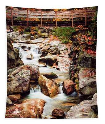 Ammonoosuc River, Autumn Tapestry