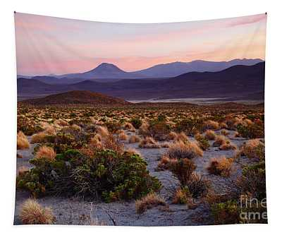 Andean Steppes At Sunset Isluga National Park Chile Tapestry