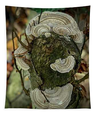 Another Fungus Tapestry