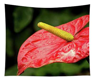 Anthurium-red Tapestry
