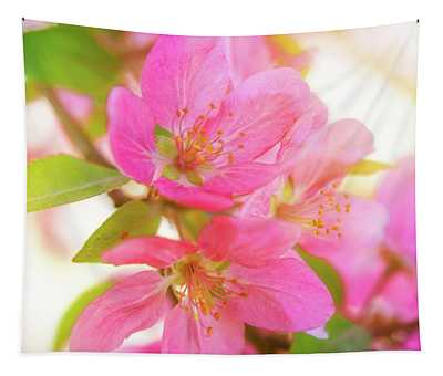 Apple Blossoms Warm Glow Tapestry
