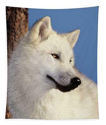 Arctic Wolf Portrait Wildlife Rescue Tapestry