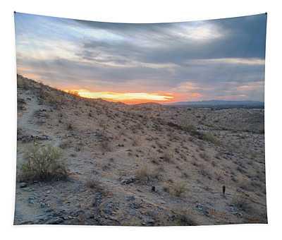Arizona Desert Tapestry