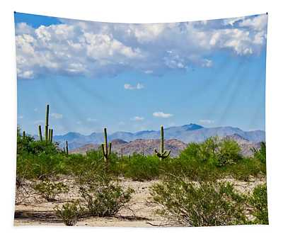 Arizona Desert Hidden Valley Tapestry