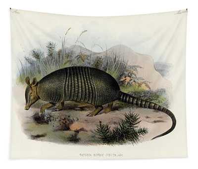 Placental Mammal Wall Tapestries