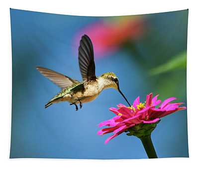 Tapestry featuring the photograph Art Of Hummingbird Flight by Christina Rollo