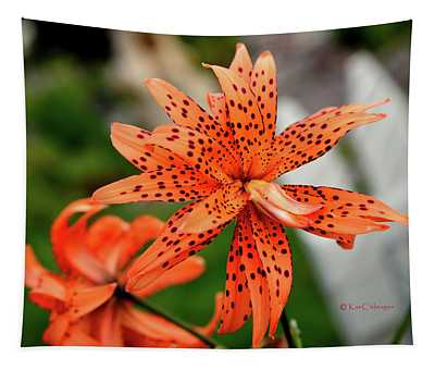 Asian Tiger Lily Tapestry