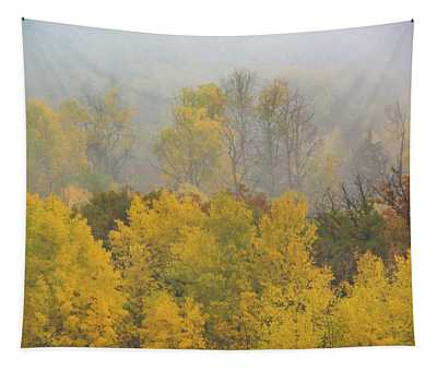 Tapestry featuring the photograph Aspen Trees In Fog by John De Bord