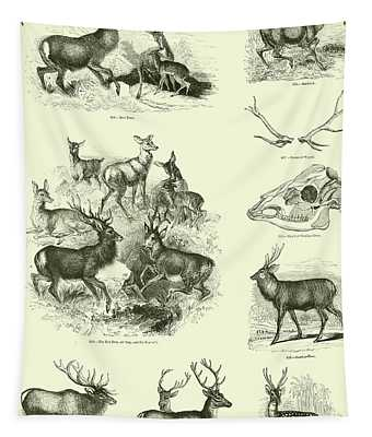 Assorted Deer Tapestry