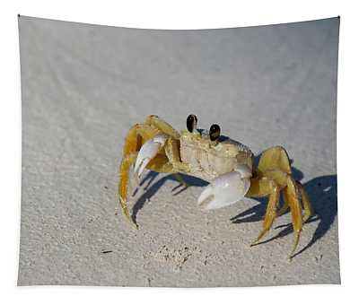 Atlantic Ghost Crab Tapestry