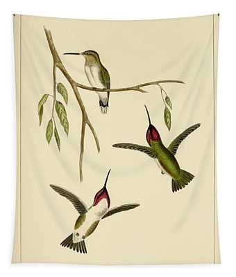 Atthis Costae Tapestry
