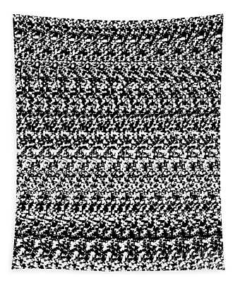 Autostereogram Dna Bw Tapestry