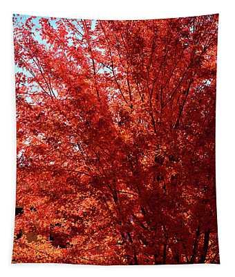 Autumn Blaze Tapestry