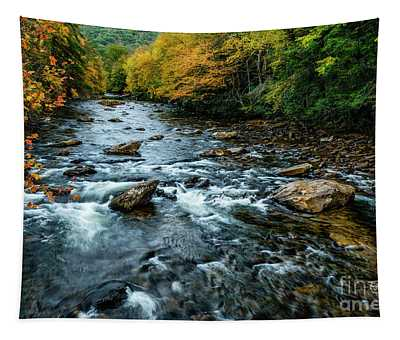 Autumn Day On Cranberry River Tapestry