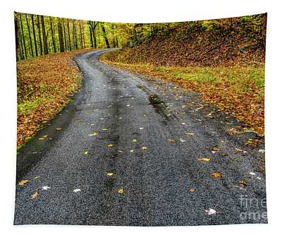 Autumn Drive Country Road Tapestry