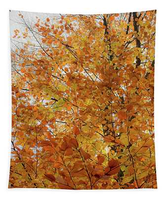 Autumn Explosion 1 Tapestry