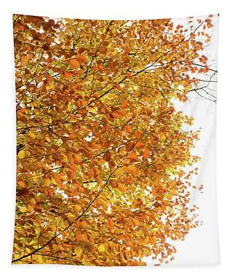 Autumn Explosion 2 Tapestry