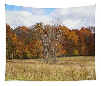 Autumn Field And Forest Tapestry