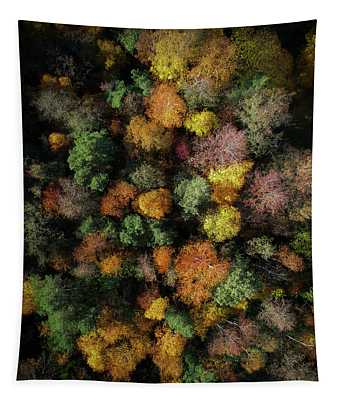 Autumn Forest - Aerial Photography Tapestry