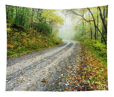 Autumn Forest Service Road Tapestry