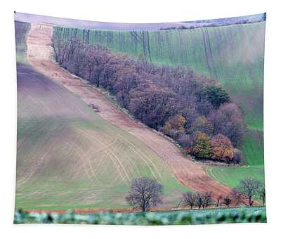 Autumn In South Moravia 10 Tapestry