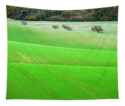 Autumn In South Moravia 12 Tapestry