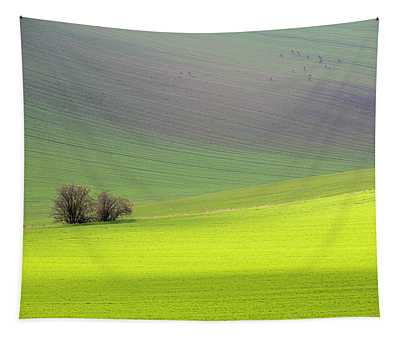 Autumn In South Moravia 13 Tapestry