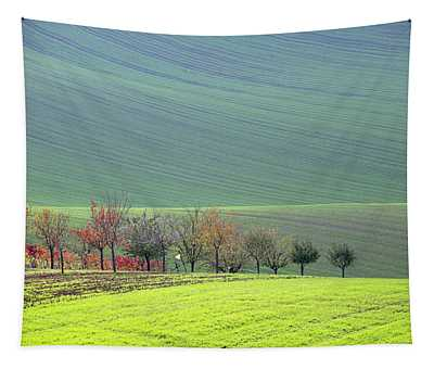 Autumn In South Moravia 18 Tapestry