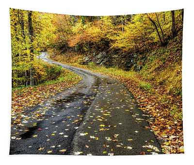 Autumn On A Country Road Tapestry