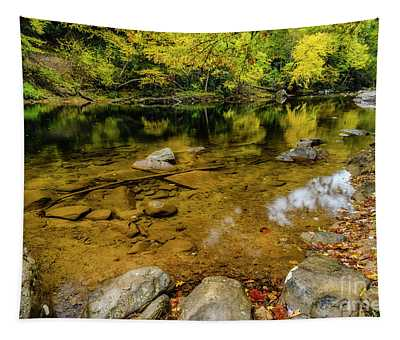 Autumn Reflections Cranberry River Tapestry