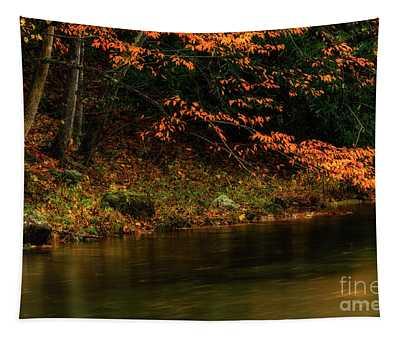 Autumn Remnant Back Fork Of Elk River Tapestry