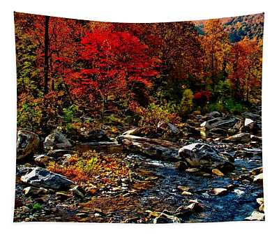 Autumn River Dreams Tapestry