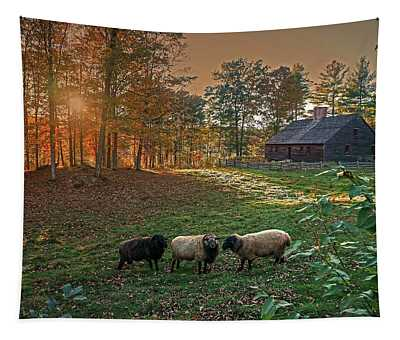 Autumn Sunset At The Old Farm Tapestry