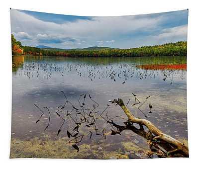 Autumn, White Lake N H Tapestry
